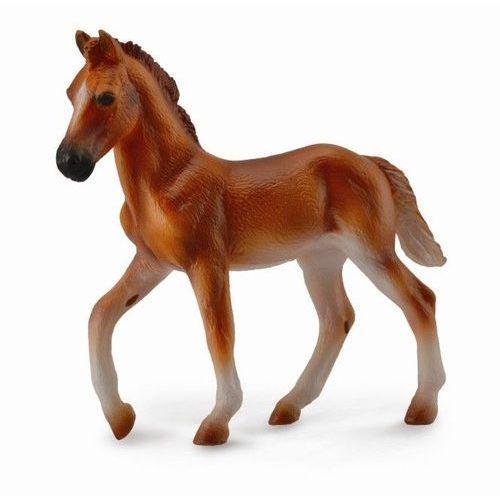 Pozostałe kosmetyki dla dzieci, Koń peruwiański paso źrebię maści kasztan m
