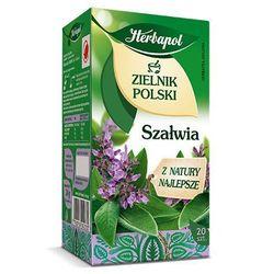 Herbatka ziołowa Zielnik Polski Szałwia EX'20 24 g Herbapol