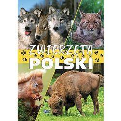 Zwierzęta Polski FENIX (opr. twarda)
