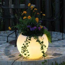 Doniczka LED Flora z akumulatorem, 50 cm białe LED