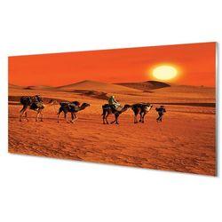 Szklany Panel Wielbłądy ludzie pustynia słońce niebo