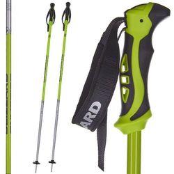 Kijki narciarskie BLIZZARD Allmountain zielono-czarno-srebrne 120 cm