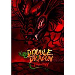 Double Dragon Trilogy (PC)