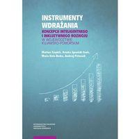 Biblioteka biznesu, Instrumenty wdrażania koncepcji inteligentnego i inkluzywnego rozwoju w województwie kujawsko-pomorskim (opr. miękka)