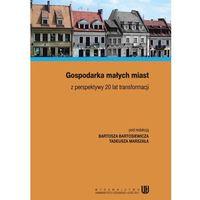 E-booki, Gospodarka małych miast z perspektywy 20 lat transformacji - Tadeusz Marszał, Bartosz Bartosiewicz