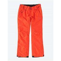 Odzież do sportów zimowych, spodnie BENCH - Democrat Dark Orange Marl (OR036X) rozmiar: S