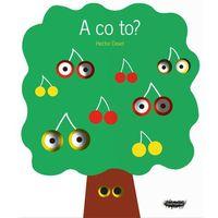 Książki dla dzieci, A co to? - HECTOR DEXET (opr. twarda)