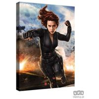 Obrazy, Obraz MARVEL Capitan America: The Winter Soldier PPD340