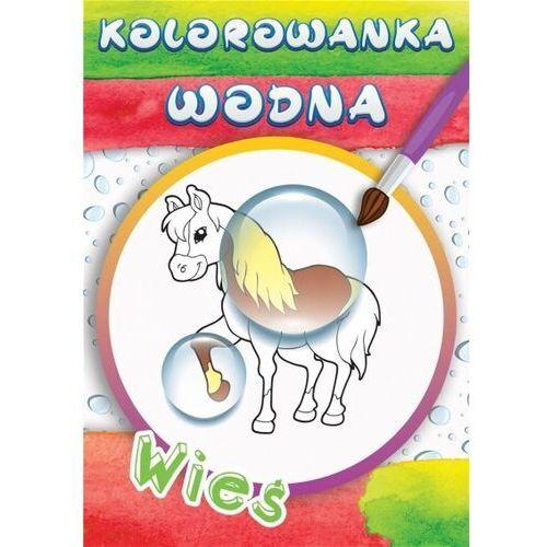 Książki dla dzieci, Wodne kolorowanki wieś (opr. broszurowa)