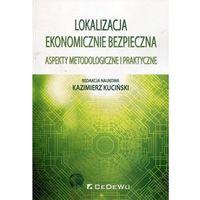 Biblioteka biznesu, Lokalizacja ekonomicznie bezpieczna - Kazimierz Kuciński (opr. miękka)