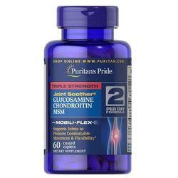 Glukozamina Chondroityna MSM 60 tabl.