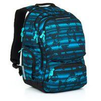 Tornistry i plecaki szkolne, Plecak młodzieżowy Topgal HIT 864 D - Blue