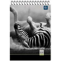 Zeszyty, Kołozeszyt Interdruk, format A5, 100 kartek, kratka, spirala po krótkim boku - Super Ceny - Kody Rabatowe - Autoryzowana dystrybucja - Szybka dostawa - Hurt - Wyceny