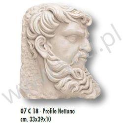 Dekor Antyczny Marmurowy PROFILO NETTUNO 33x39 cm