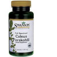 Preparaty ziołowe, Forskolina pokrzywa indyjska 400mg Coleus Forskohli 60 kapsułek SWANSON