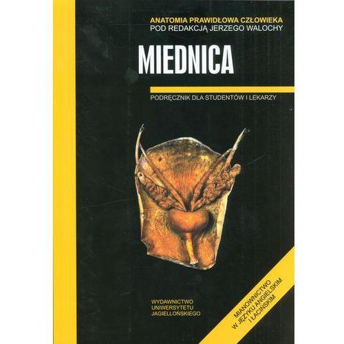 Książki medyczne, Miednica Anatomia prawidłowa człowieka (opr. broszurowa)