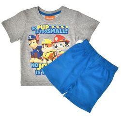Piżama dla dzieci Psi Patrol szara z krótkim rękawem - Niebieski ||Szary