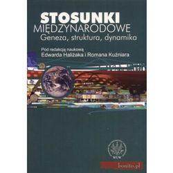 Stosunki międzynarodowe Geneza, struktura, dynamika - Edward Haliżak (opr. miękka)