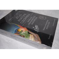 Książki medyczne, Atlas anatomii człowieka Nettera Angielskie mianownictwo anatomiczne (opr. broszurowa)