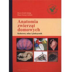 Anatomia zwierząt domowych 2015 (opr. twarda)