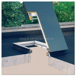 Wyłaz do dachów płaskich Fakro DRL 60x120