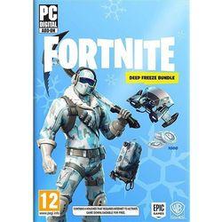 Fortnite Deep Freeze (PC)