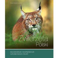 Słowniki, encyklopedie, Zwierzęta Polski - Renata Kosińska (opr. twarda)