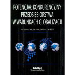 Potencjał konkurencyjny przedsiębiorstwa w warunkach globalizacji (opr. miękka)