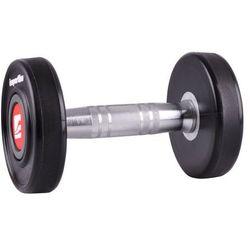 Hantla inSPORTline Profi 2x4 kg