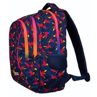 Tornistry i plecaki szkolne, ST.RIGHT Plecak szkolny 3 komory Rainbow Bird 2019