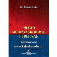 Biblioteka biznesu, Prawo międzynarodowe publiczne. Zarys wykładu (opr. miękka)