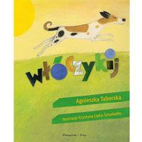 Książki dla młodzieży, Włóczykij [Taborska Agnieszka] (opr. twarda)