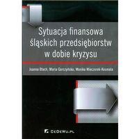 Książki o biznesie i ekonomii, Sytuacja finansowa śląskich przedsiębiorstw w dobie kryzysu (opr. miękka)