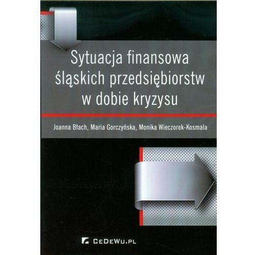 Biblioteka biznesu, Sytuacja finansowa śląskich przedsiębiorstw w dobie kryzysu (opr. miękka)