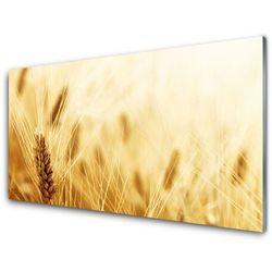 Panel Szklany Pszenica Roślina Natura