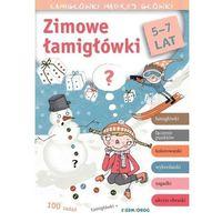 Książki dla dzieci, Zimowe łamigłówki. Łamigłówki mądrej główki (opr. broszurowa)