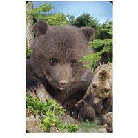 Pozostałe artykuły papiernicze, Mini kartka 3D Niedźwiedź Brunatny