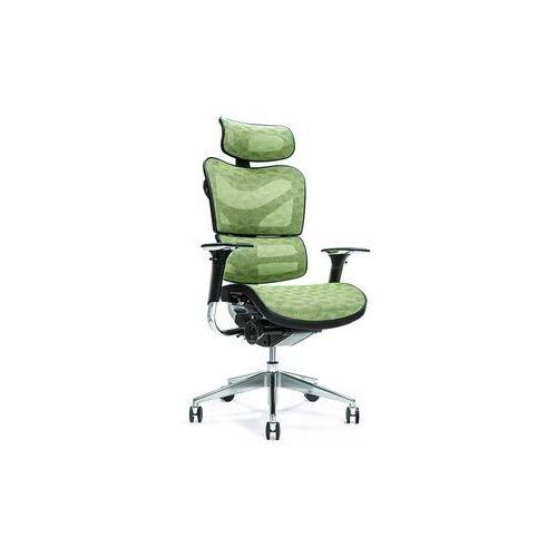 Fotele i krzesła biurowe, Ergonomiczny fotel biurowy ERGO 700 zielony