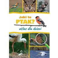 Książki dla dzieci, Jaki to ptak. Atlas dla dzieci - Dominik Marchowski (opr. twarda)