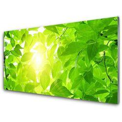 Panel Szklany Liście Natura Słońce Roślina