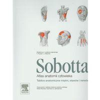 Książki o zdrowiu, medycynie i urodzie, Atlas anatomii człowieka Sobotta. Tablice anatomiczne mięśni, stawów i nerwów (opr. miękka)
