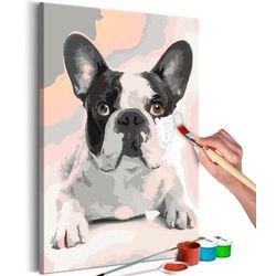 Artgeist Obraz do samodzielnego malowania - buldog francuski
