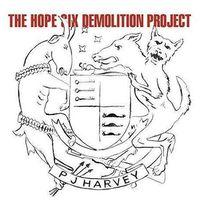 Pozostała muzyka rozrywkowa, PJ Harvey - The Hope Six Demolition Project