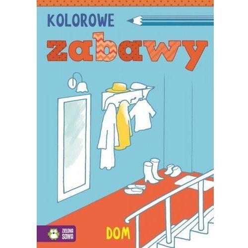 Książki dla dzieci, Kolorowe zabawy Dom (opr. miękka)