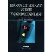 Biblioteka biznesu, Finansowe determinaty wzrostu w gospodarce globalnej