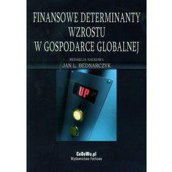 Finansowe determinaty wzrostu w gospodarce globalnej