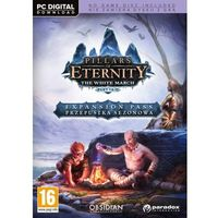 Gry PC, Pillars of Eternity The White March (PC)