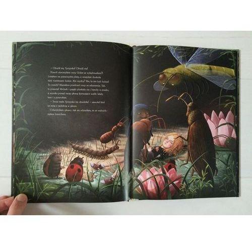 Książki dla dzieci, Tyczka w Krainie Szczęścia (opr. twarda)