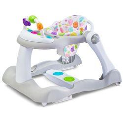 Toyz bounce chodzik wielofunkcyjny dla dziecka