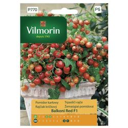 Pomidor Balconi Red